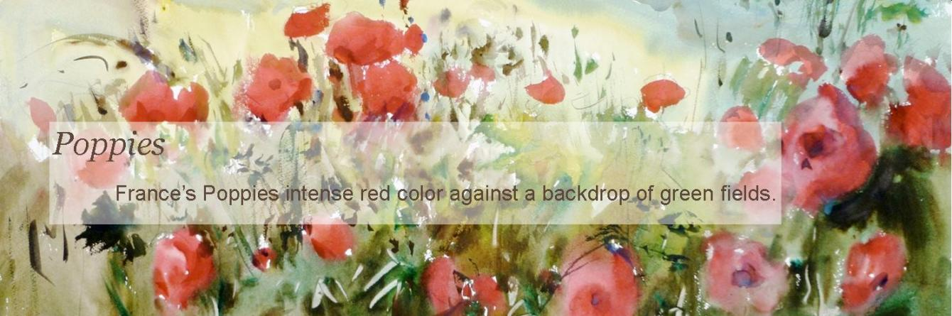 Poppies-Giclee-slm
